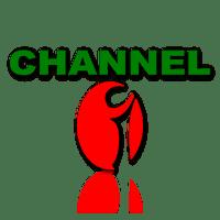 BDIX Server - Channel i Live Streaming